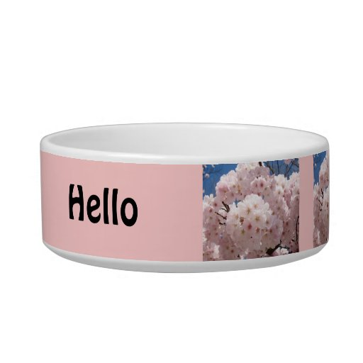 Hello Kitty food bowl Pink Flower Blossoms Spring Cat Food Bowls
