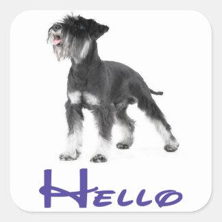 Hello Miniature Schnauzer Puppy Dog  Sticker