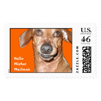 Hello Mister Mailman Postage stamps