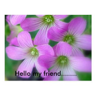 Hello my friend........ postcard