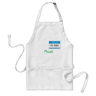 Hello My Name is Mr. Right Adult Apron