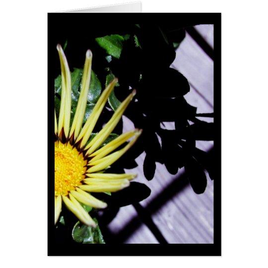 Hello, Sunshine.2 Card