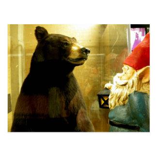 Hello There Bear Postcard