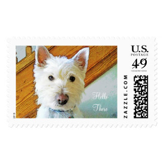 Hello There, Westie Dog Looking at You Postage