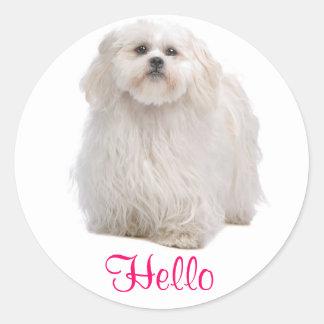 Hello White Shih Tzu Puppy Dog Greeting Stickers