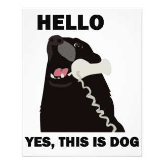 HELLO YES THIS IS DOG telephone phone Flyer