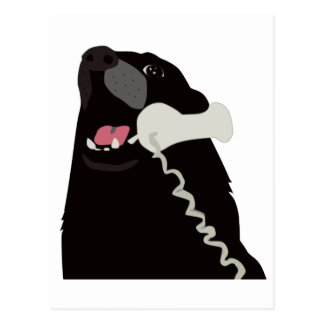 HELLO YES THIS IS DOG telephone phone Postcard