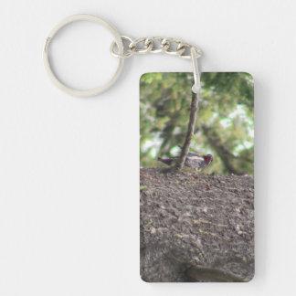 Hells Canyon Idaho Animals / Birds Aves Rectangular Acrylic Keychains
