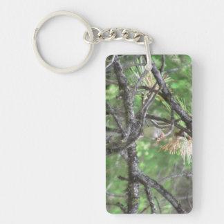 Hells Canyon Idaho Animals / Birds Aves Acrylic Key Chains