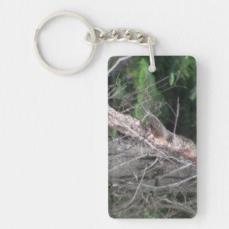 Hells Canyon Idaho Animals / Birds Aves Rectangle Acrylic Key Chains