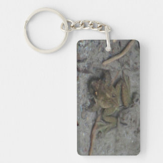 Hells Canyon Idaho Aquatic Animals / Plants Frog Acrylic Keychains