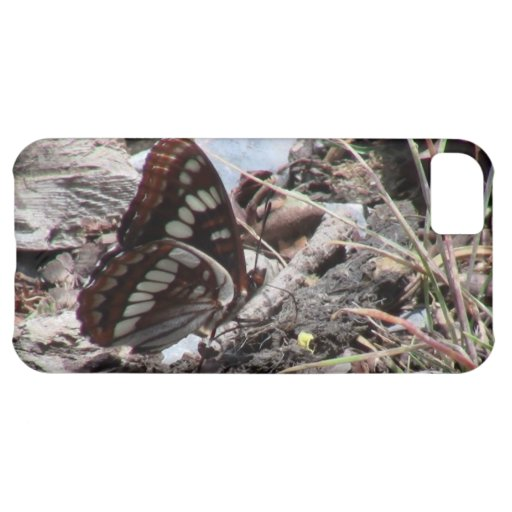 Hells Canyon Idaho Fauna Insects / Arachnids Cover For iPhone 5C