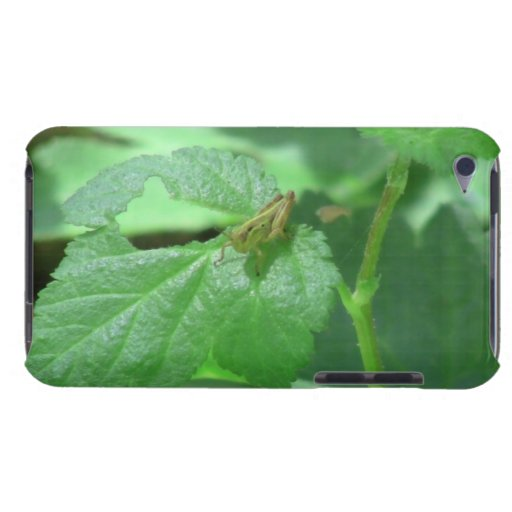 Hells Canyon Idaho Fauna Insects / Arachnids iPod Touch Cases