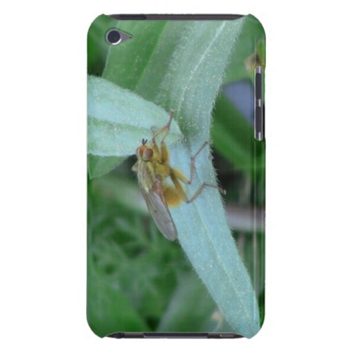 Hells Canyon Idaho Fauna Insects / Arachnids iPod Touch Cover