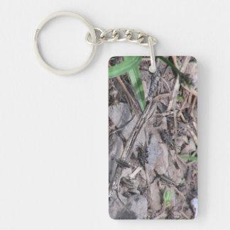 Hells Canyon Idaho Fauna Insects / Arachnids Rectangle Acrylic Keychain
