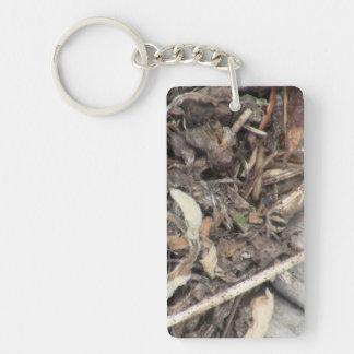 Hells Canyon Idaho Fauna Insects / Arachnids Rectangular Acrylic Key Chain