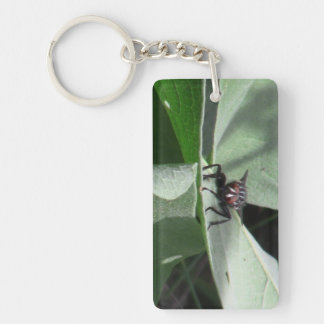 Hells Canyon Idaho Fauna Insects / Arachnids Rectangle Acrylic Key Chain