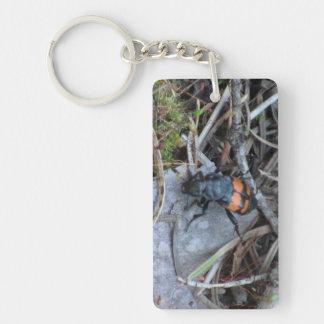 Hells Canyon Idaho Fauna Insects / Arachnids Acrylic Key Chain