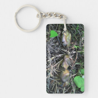 Hells Canyon Idaho Flora Fungi Lichen Mosses Rectangle Acrylic Keychains