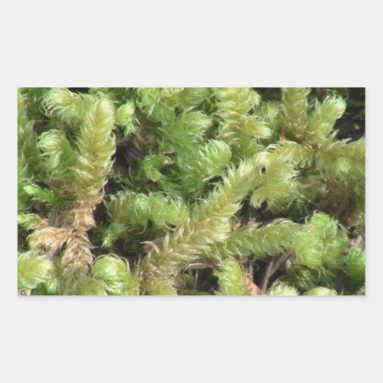 Hells Canyon Idaho Flora Fungi Lichen Mosses Rectangular Sticker
