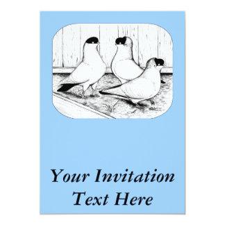 Helmet Pigeon Trio Card