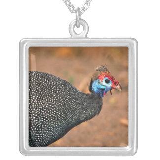 Helmeted Guinea Fowl (Numida meleagris). Africa, Square Pendant Necklace