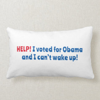 Help! I Voted for Obama and I Can't Wake Up! Pillow
