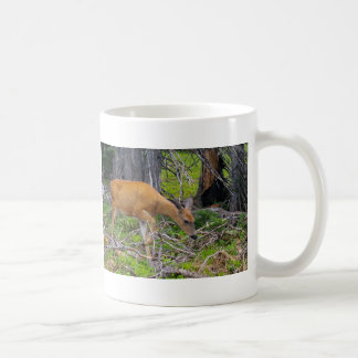 Help protect our wildlife! mugs