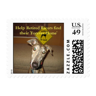 Help Retired Racers find their 'Forever Home' Postage Stamp
