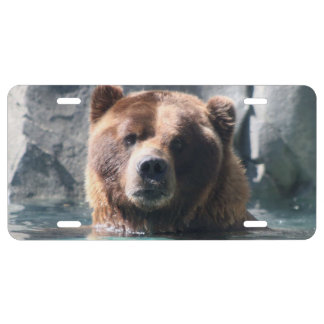 Help Save All bears License Plate