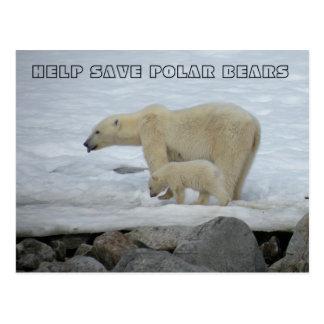HELP SAVE POLAR BEARS POST CARDS