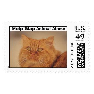 Help Stop Animal Abuse Postage Stamp