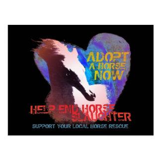 Help Stop Horse Slaughter Postcard