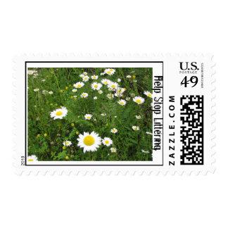 Help Stop Littering (Daisy Field) Stamp