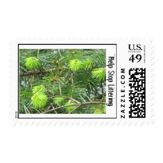 Help Stop Littering (Pine Tree) Stamp