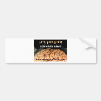Help us in our global mission to FEED the BRAINS Bumper Stickers