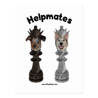 Helpmates Chess Dogs Postcard