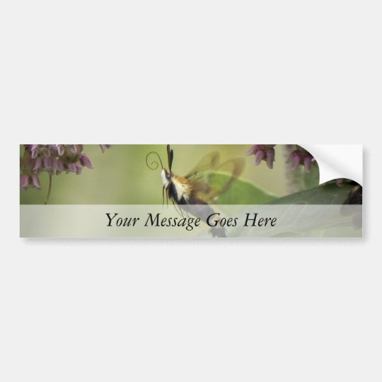 Hemaris Thysbe - Hummingbird Moth Bumper Sticker
