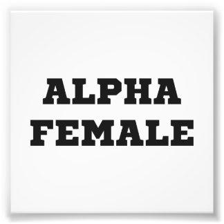 Hembra alfa cojinete