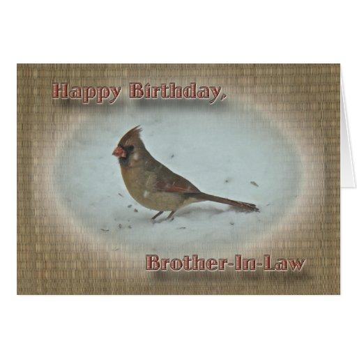 Hembra cardinal del cuñado del cumpleaños felicitacion