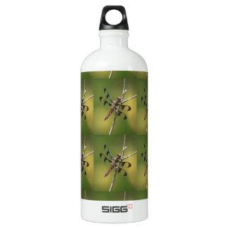 Hembra común de la libélula de la desnatadora del botella de agua