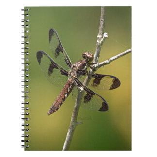 Hembra común de la libélula de la desnatadora del  libros de apuntes con espiral