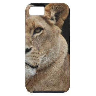 Hembra del león que se acuesta iPhone 5 funda