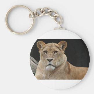 Hembra del león que se acuesta llavero redondo tipo pin