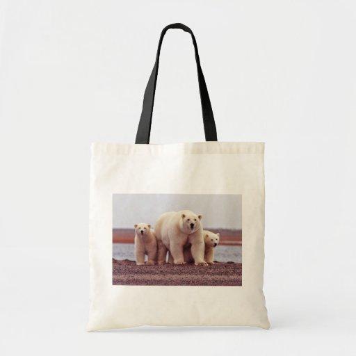 Hembra del oso polar con los jóvenes bolsa tela barata