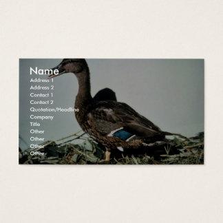 Hembra del pato silvestre tarjetas de visita