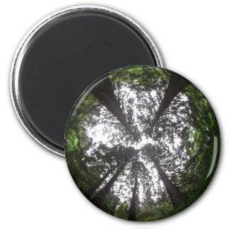 Hemi Forest Magnet