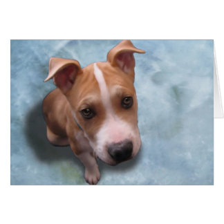 Hemi the Pit Bull Puppy Greeting Cards