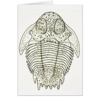 Hemiarges paulianus Trilobite Card