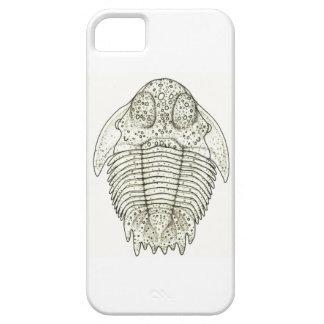 Hemiarges paulianus Trilobite iPhone Case iPhone 5 Case